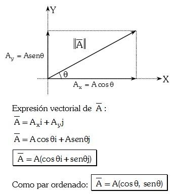 Descomposicion de los vectores