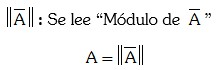 Denotacion del modulo de un vector