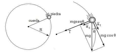 Dinamica Circular